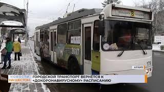 Городской транспорт вернётся к «докоронавирусному» расписанию