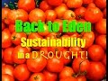 Back to Eden~Sustainability in a Drought!