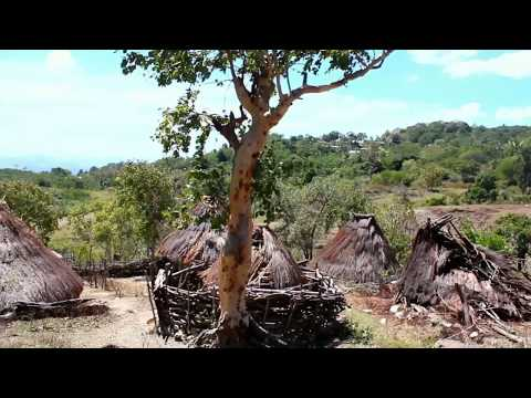 "Film Dokumenter SM-3T UNP ""Pengabdian Di Tapal Batas"" Republik Indonesia- Timor Leste"