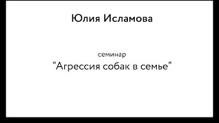 "Юлия Исламова: семинар ""Агрессия собаки в семье"" (3/4)"