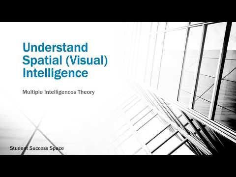 Understand Spatial Intelligence