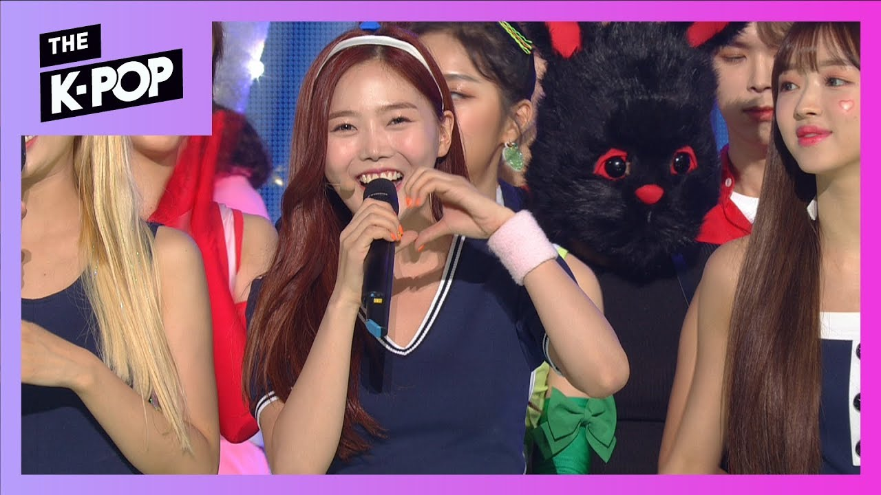 Official sbp] OHMYGIRL THE SHOW CHOICE! [THE SHOW 190813]   | WoW!Korea