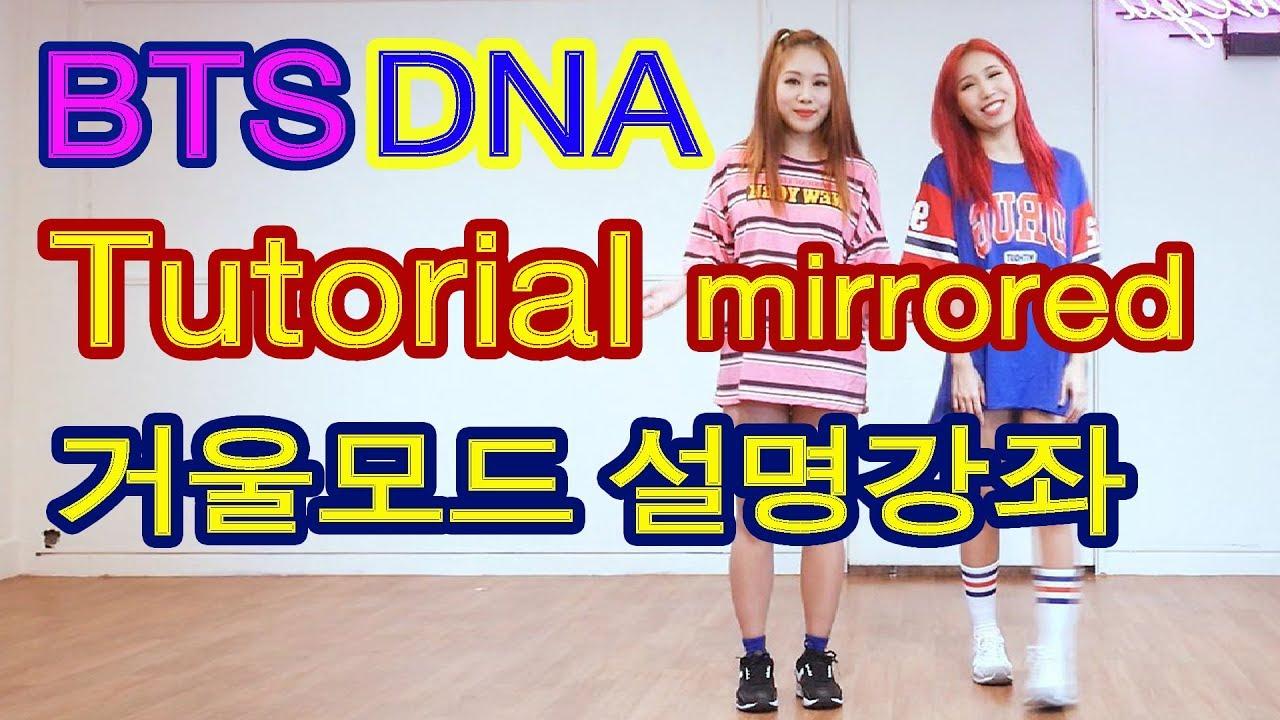 BTS 방탄소년단 DNA Dance Tutorial (1)거울모드 느리게 설명강좌 Waveya