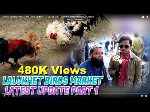 Lalukhet Sunday birds Market Latest Update 14-1-2018 (Part 1) Jamshed Asmi Informative Channel