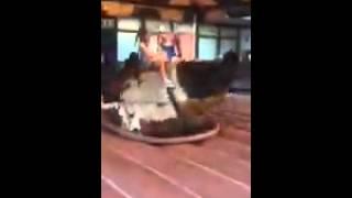 Bull Riding little girl