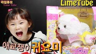 라임의 애교쟁이 귀요미 강아지 키우기 장난감 놀이 LimeTube & Toys 라임튜브