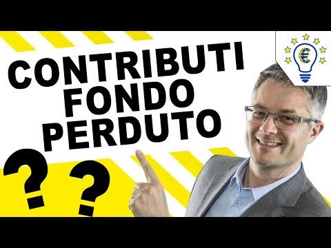 Finanziamenti A Fondo Perduto 2019 Bandi Europei Regionali Prestiti Agevolati