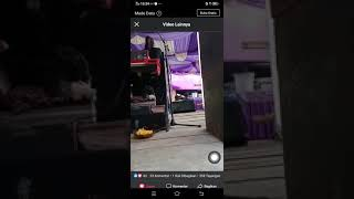 Download Mp3 Dena Penipu Hati Tata Zaneta