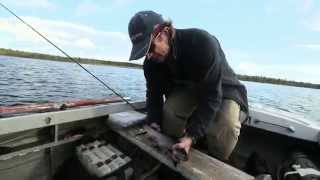 Рыбалка видео онлайн - смотрите видео о рыбалке
