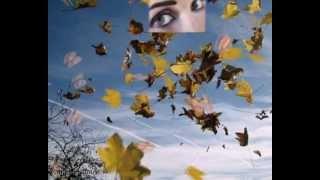 Le Temps efface tout (musique de Arcane300313-Joël Reverdy)