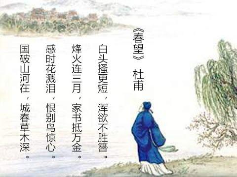 唐代诗词故事系列《春望》 【文化大百�0824 】