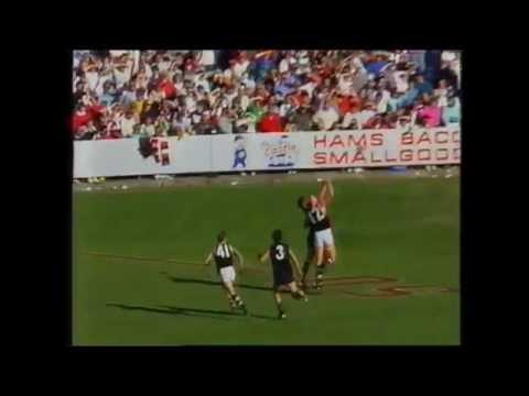 St Kilda vs Carlton Rd 6 1991