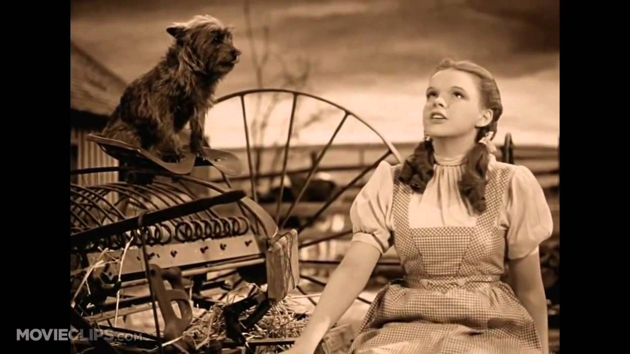 Somewhere over the rainbow the wizard of oz 1 8 movie clip 1939 hd youtube 720p youtube - The wizard of oz hd ...