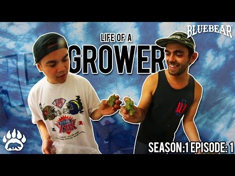 Life of a Grower: S1.E1 The INTRO