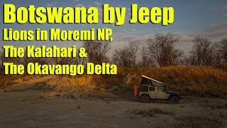Botswana by Jeep - Lions in Moremi NP, The Kalahari & The Okavango Delta