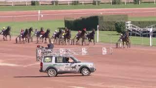 Vidéo de la course PMU PRIX DU CERVIN