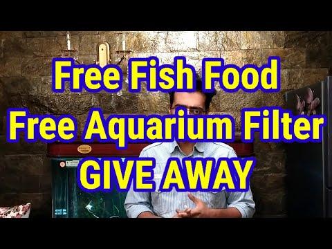 FREE Fish Food / FREE Aquarium Filter / GIVE AWAY / Crossed 2000 Subscribers / Aim 2500 / Thanks...