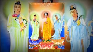 Nhạc kệ tán thán Đức Phật ( tiếng hoa ) và hình ảnh phật đẹp 2018