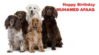 Muhamed Afaaq   Dogs Perros - Happy Birthday