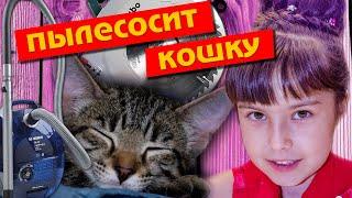 ПЫЛЕСОСИТ КОШКУ и РАБОТАЕТ ОПАСНЫМИ ИНСТРУМЕНТАМИ - ЖУТЬ! Опасный страшный ролик прикольные кошки