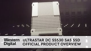 Maximize Server and Storage Scalability with Ultrastar DC SS530 SAS SSD