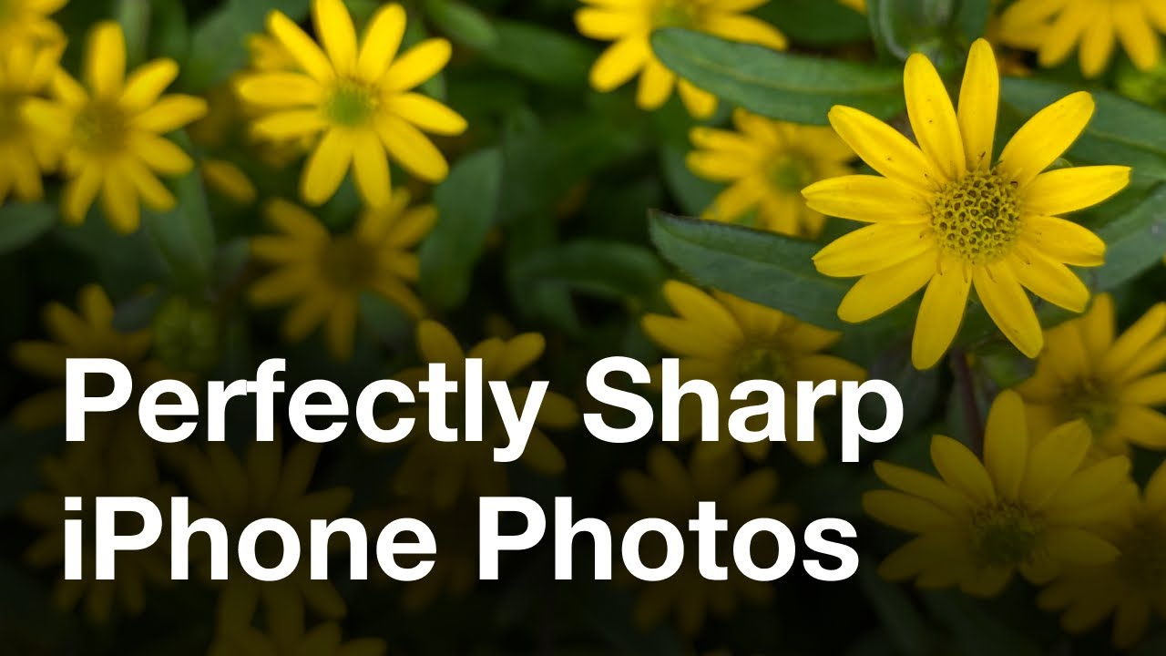 Secret iPhone Camera Feature For Perfectly Sharp Photos