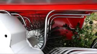 OrganicBioAronia - Harvesting Aronia - Aronija
