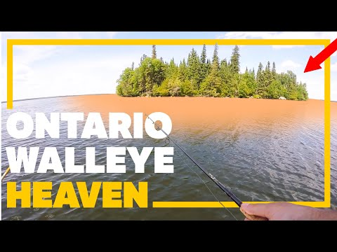The HOLY GRAIL Of Walleye Fishing! (Onaman Lake Ontario)