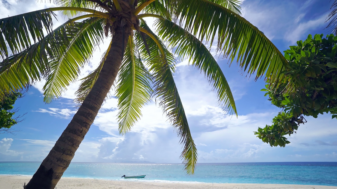 The Perfect 4K Beach Scene: Fiji 1 Hour Glistening Island Beach plus Nature Sounds UHD