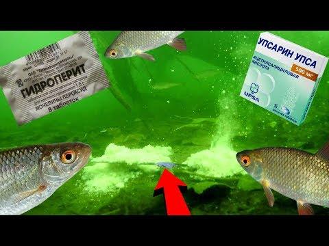 Реакция рыбы на UPSA и ГИДРОПЕРИТ!? Подводная съемка