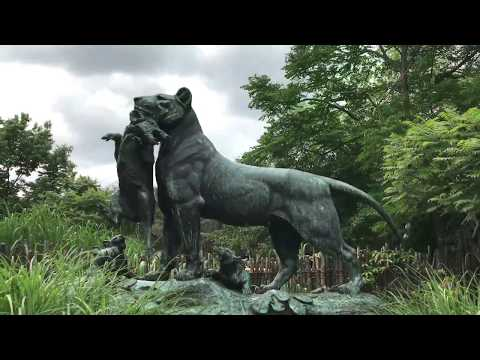 The Philadelphia Zoo Trip! - Philadelphia Travel - Part 3