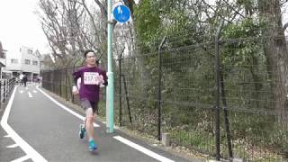 2019 Tama Lake Ekiden (Around 7km Point of Loop Course) All Runners 2019 多摩湖駅伝 (多摩湖周回コース 7km付近)全ランナー