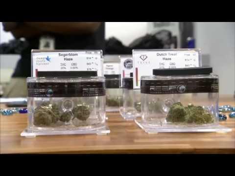 Mungesa në treg, Nevada kërkon hashash - Top Channel Albania - News - Lajme