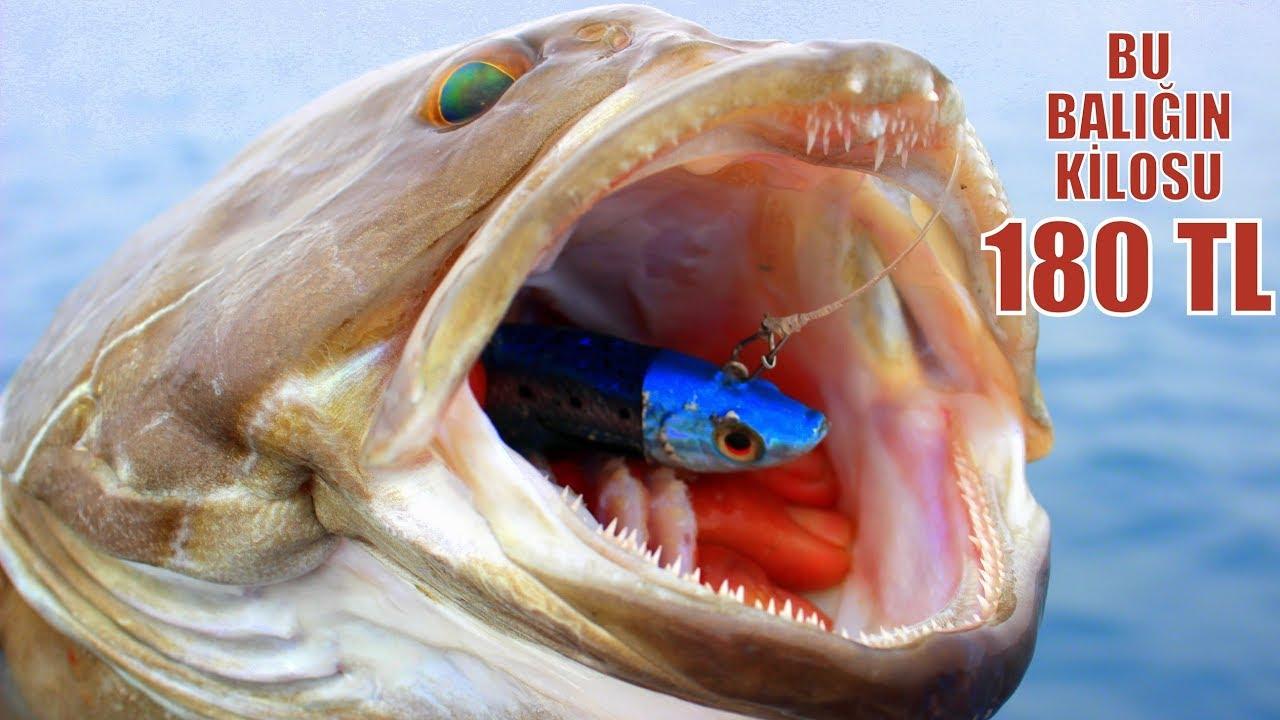 Denizlerin En Pahalı Balığını Yakaladık !! / Lüferler ve Sürpriz Canavar