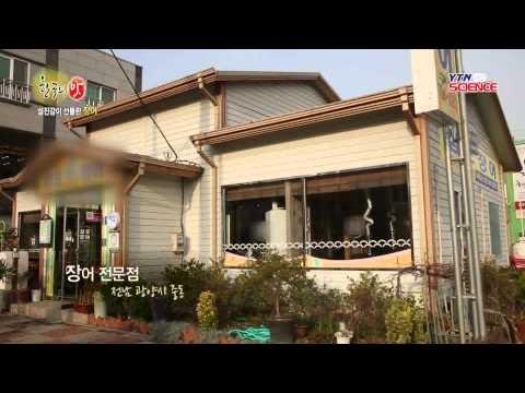 남도 끝자락의 맛, 광양 / YTN 사이언스