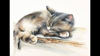 Watercolor Sleeping Cat Painting Demonstration