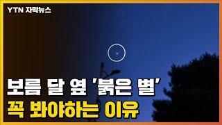 [자막뉴스] 밤하늘 둥근 달 옆 '붉은 별…