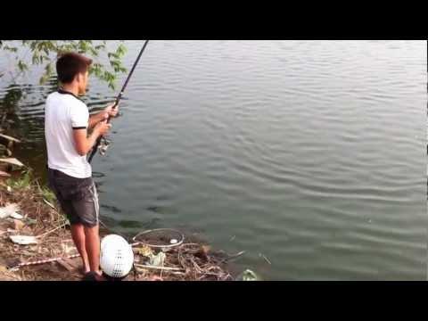 câu cá hồ Sài Đồng