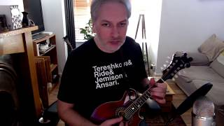 The Banks Of Lough Gowna (jig) on mandolin