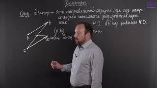 Геометрия, 10 класс | Векторы. Часть 1