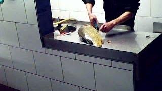 """Das Leiden der """"Silvesterkarpfen"""" -- Tierschützer bei Dokumentation angegriffen (Dong Xuan Center)"""