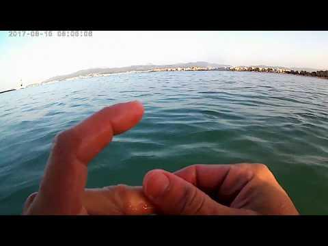 Underwater metal detecting Mallorca