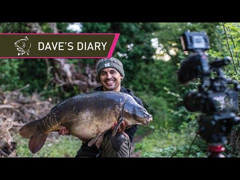 BIGGEST CARP IN THE LAKE! Dave's Diary Episode 1
