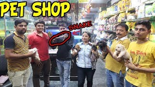 CHEAPEST DOGS AND PET SHOPS  ( PART 2) || Deepti Vlog