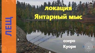 Русская рыбалка 4 - озеро Куори - Лещ со скалистого берега