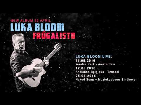 Luka Bloom - January Blues (official audio only)