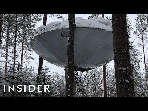 Tree House Looks Like A UFO