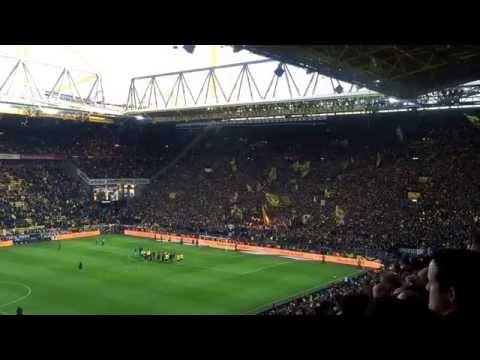 Derbysieger! (BVB - Schalke 04 3:0, 28.02.2015)