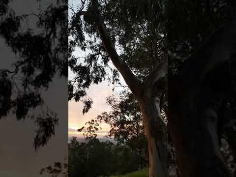 Australia- Sunshine Coast Sunrise - places to visit