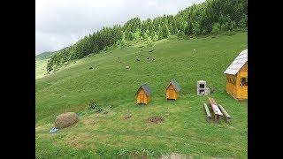 Biogradska gora,  Damjanovića kolibe, Montenegro (trailer 1:12 min)